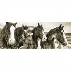 Clydesdales Sepia