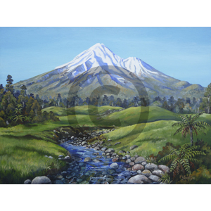 Mount Taranaki from Cold Creek