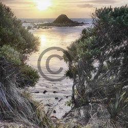 Monkey Island Sunset